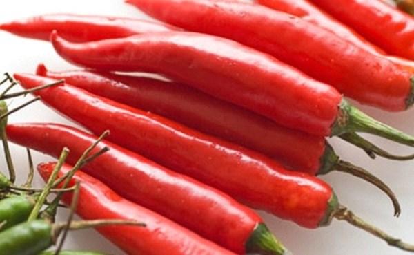 ớt đỏ dài 600_369