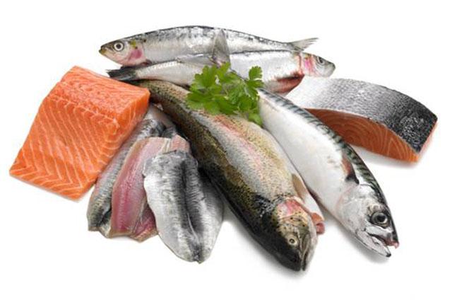 Cá cung cấp nhiều chất đạm cần thiết cho cơ thể - Thực phẩm An Tâm